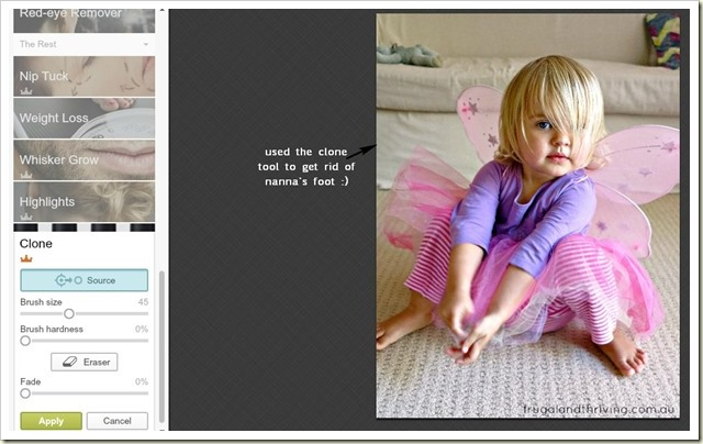 Using the clone tool in PicMonkey